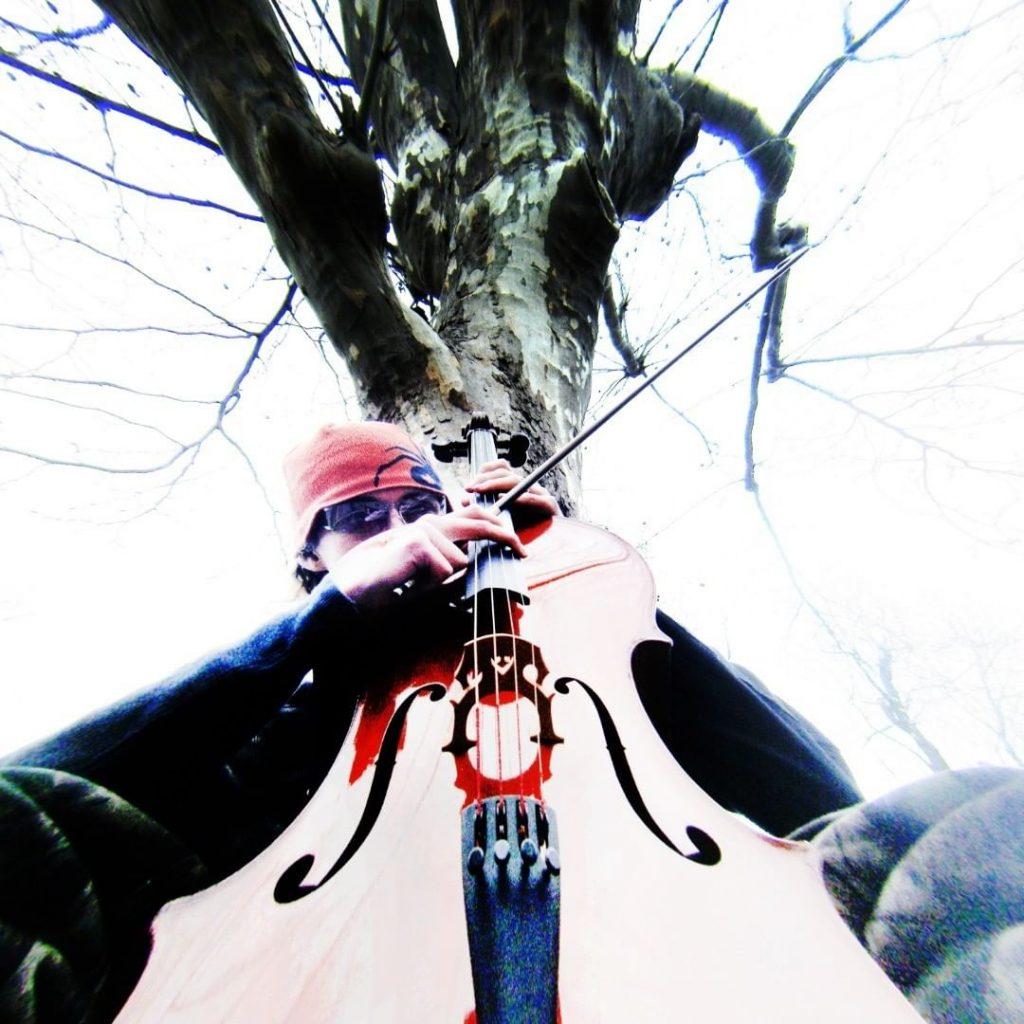 chorareii_psitallstar_cello