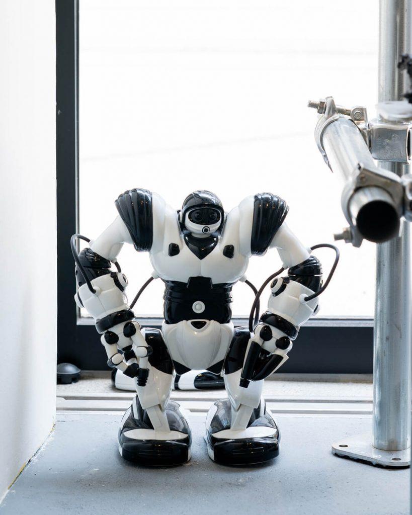 chorareii_gillochindoxgillochindae_robot